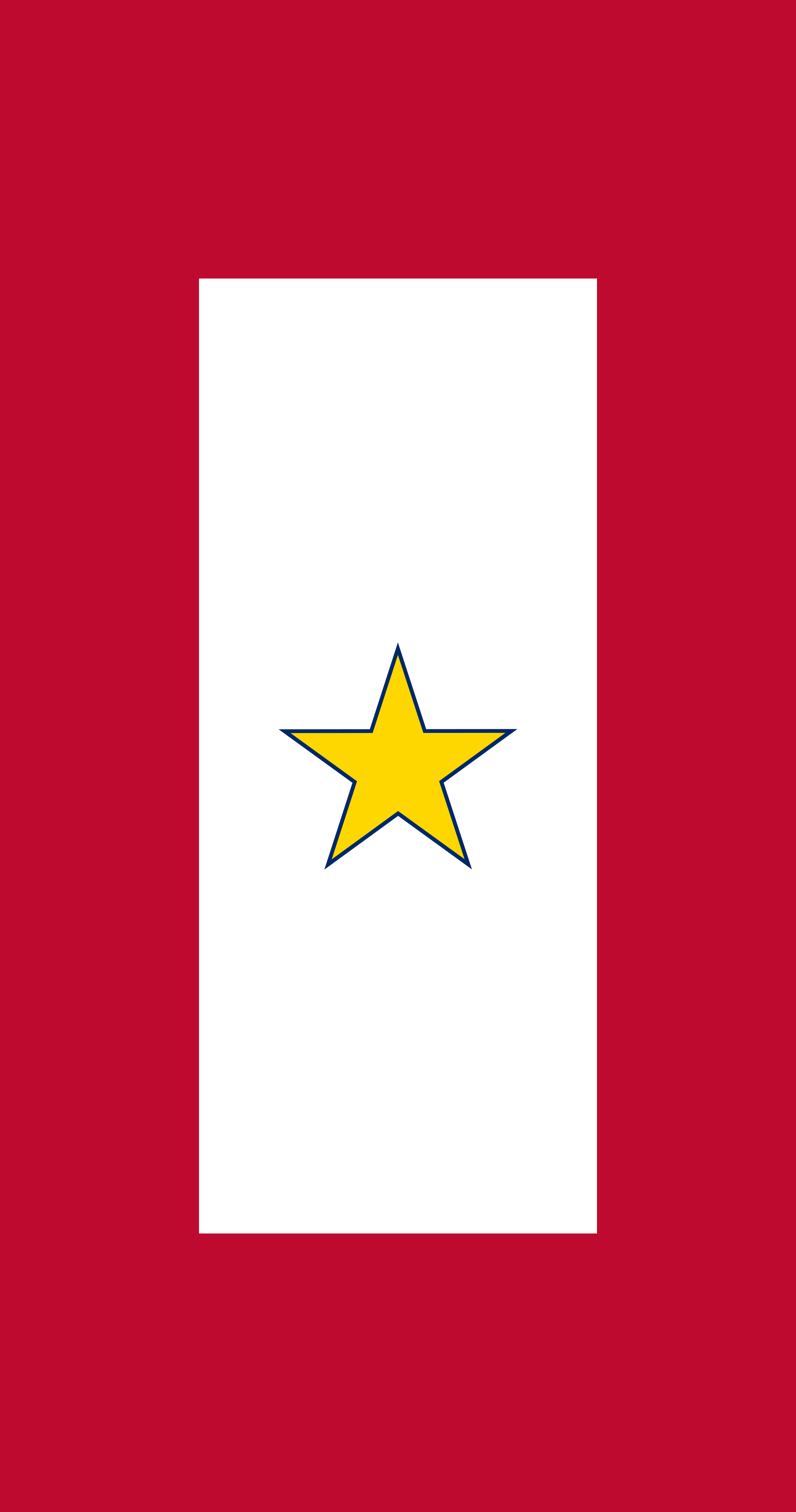 2000px-Gold_Star_Service_Banner_svg.png