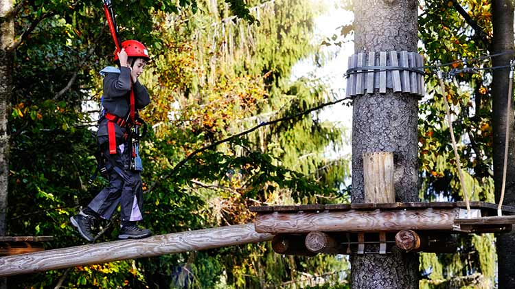 Ropes Course & Zipline in Asiago
