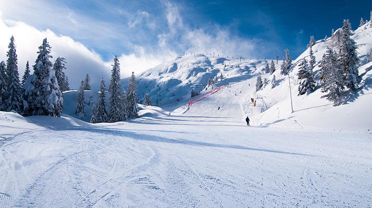 Ski/Snowboard Trip: Paganella