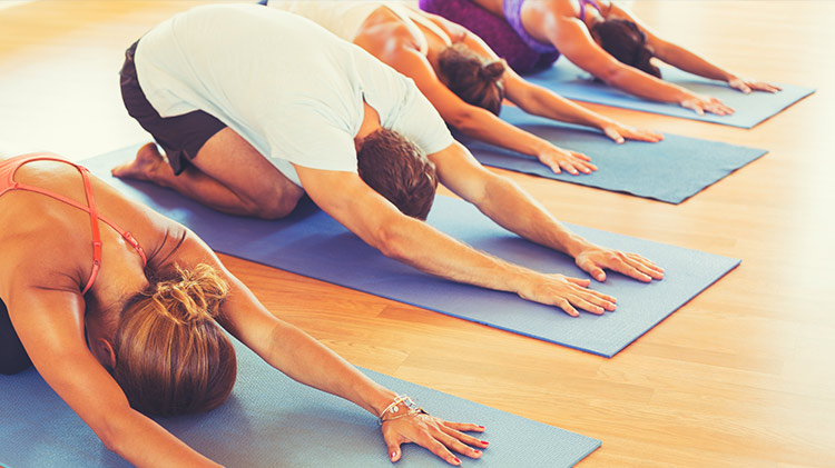 Yoga Flow Foundations - Small Group
