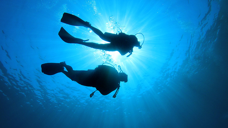 Basic Open Water Scuba Diving in Croatia