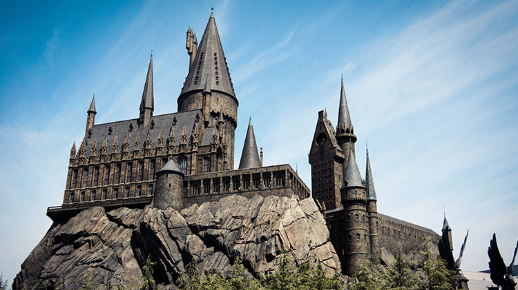 SAC No School Day: Harry Potter Day